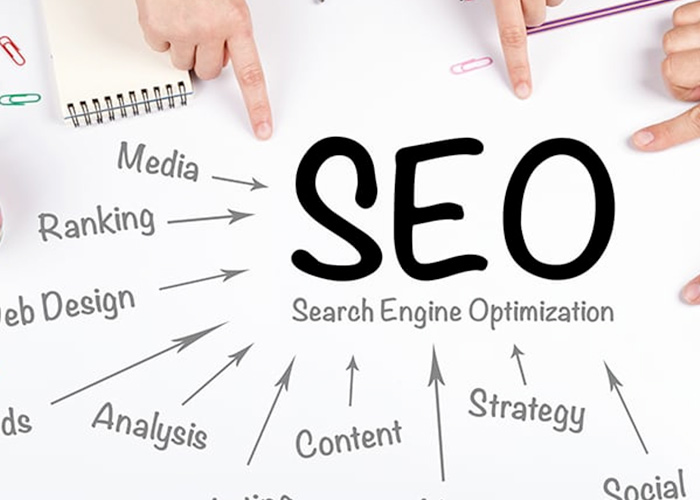 SEO training and websites