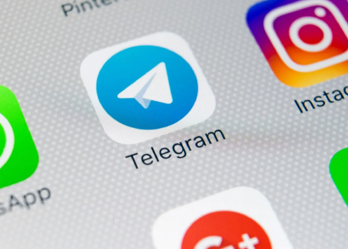 How to apply for blue checkmark in telegram?